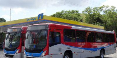 MT: Campo Grande receberá 20 novos ônibus nesta segunda-feira